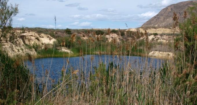 Laguna de Fontcalent en la Partida Vallonga